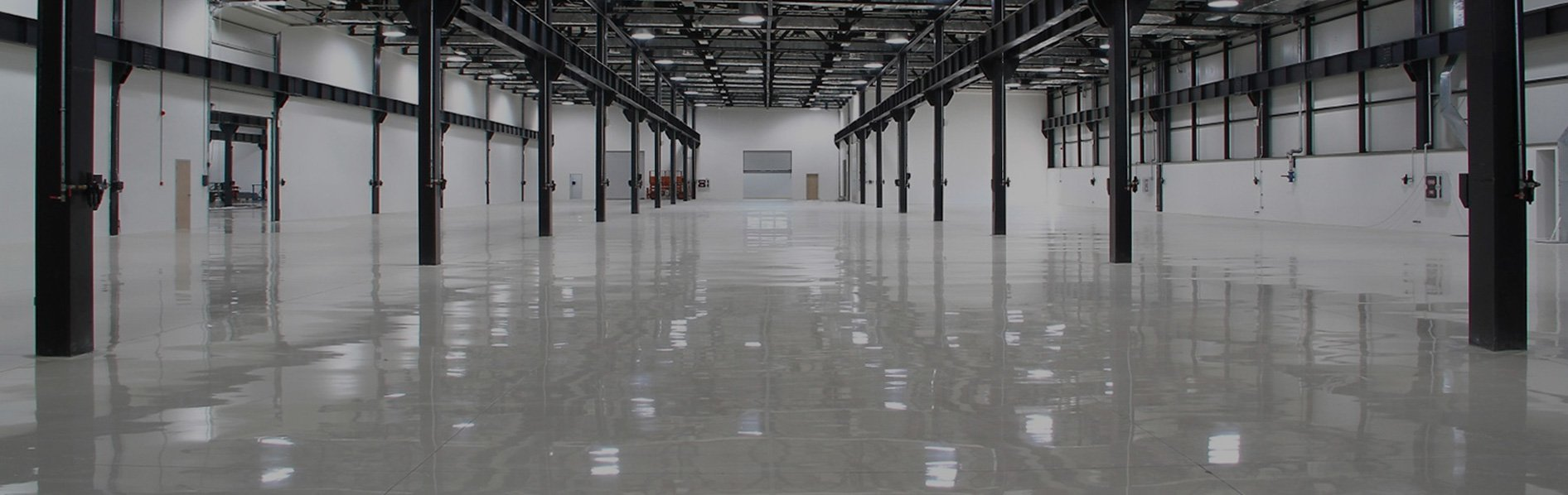 plant-floor-with-shadown_new